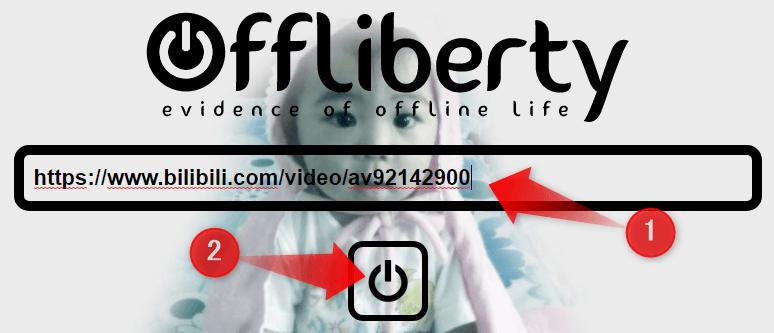 ダウンロードしたいbilibili動画のURLを貼り付ける